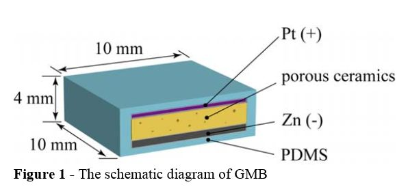 Diagram Gastric-fluid-utilizing Micro Battery (GMB)
